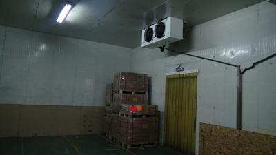 camara frigorifica ITL